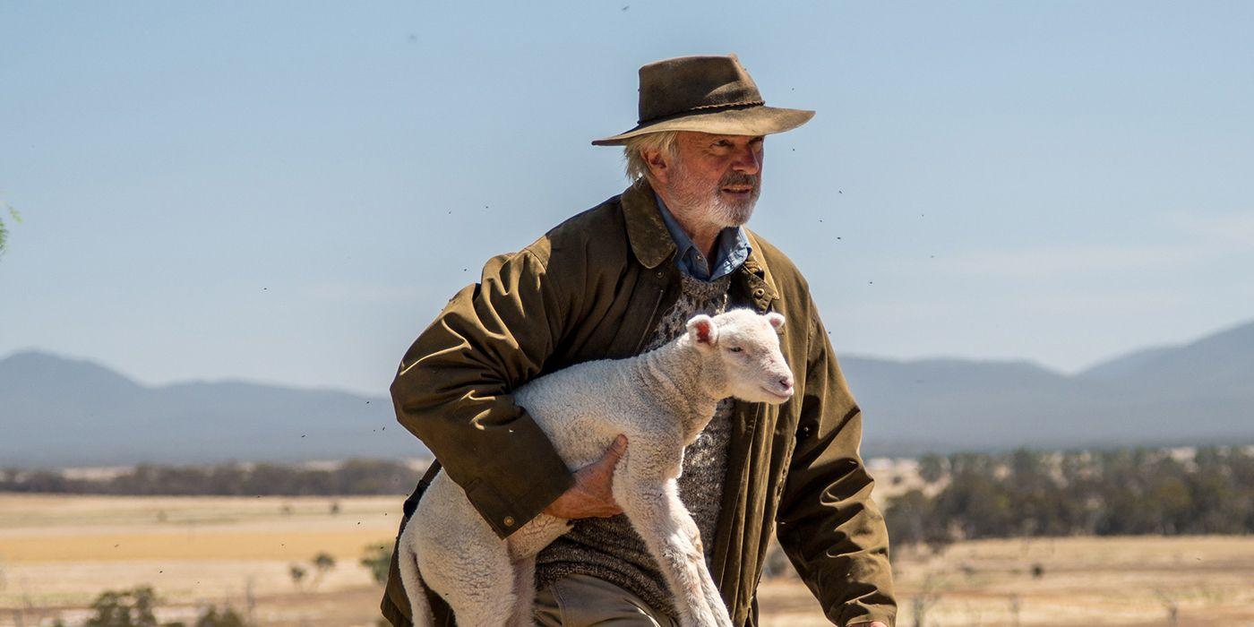 Sam Neill, Cute Sheep Shine in Heartwarming Rams Trailer