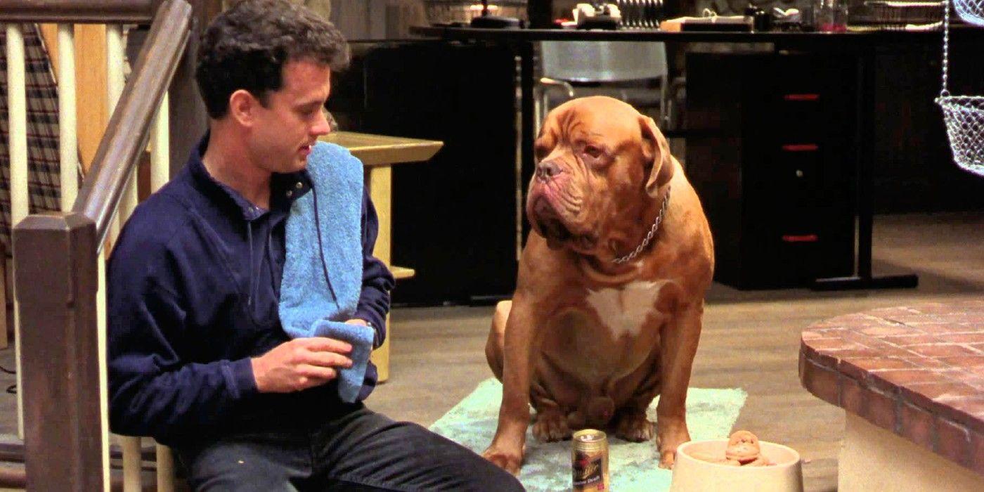 Tom Hanks' New Sci-Fi Movie Finch Follows Greyhound to Apple TV Plus